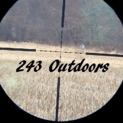 243OutDoors avatar